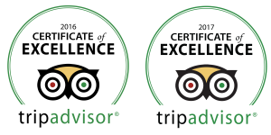 Excellence certificate of trip advisor